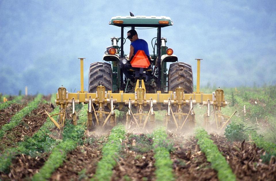 O que é penhor rural e como fazer?